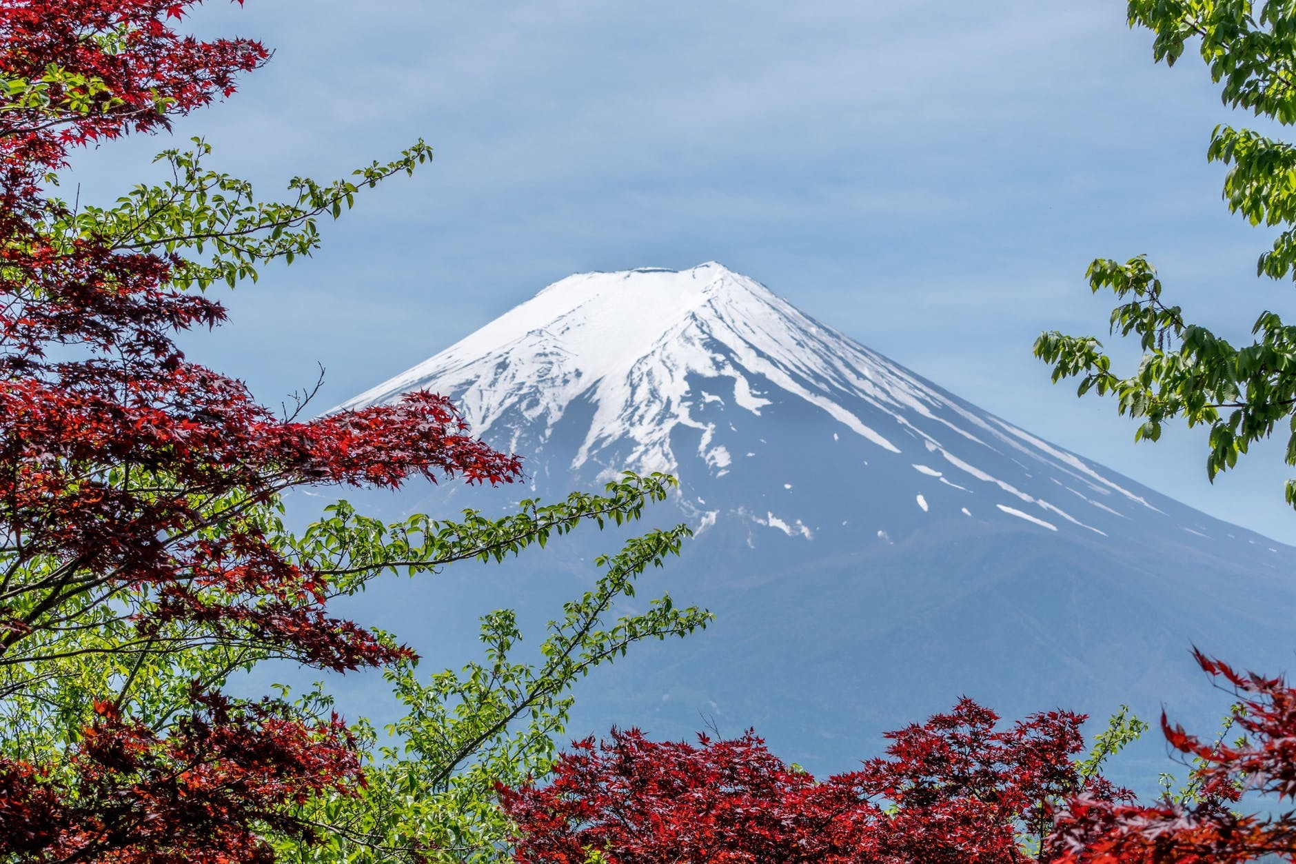 Flight Deal Round Trip From San Francisco Area to Tokyo #sanfrancisco #tokyo #1week